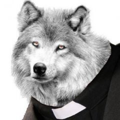 Reverend Wolf